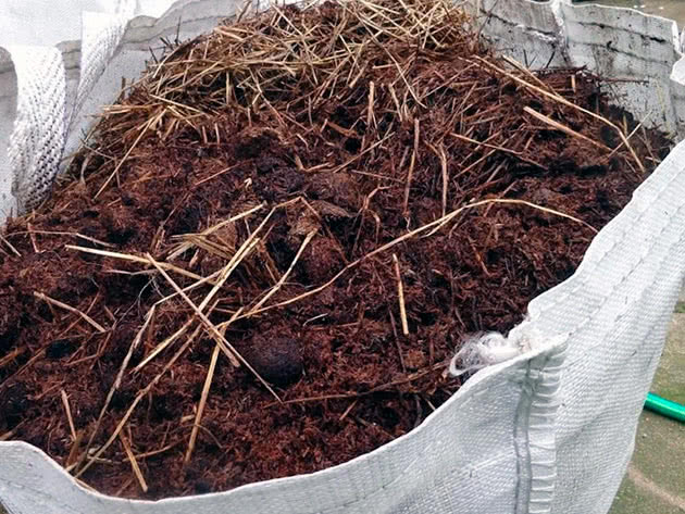 Types of manure and their features