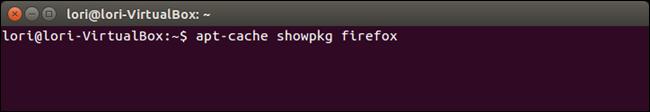 06_aptcache_using_showpkg_option