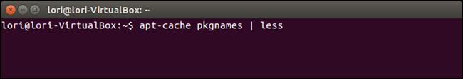 01_aptcache_apt_cache_pkgnames_command_with_less