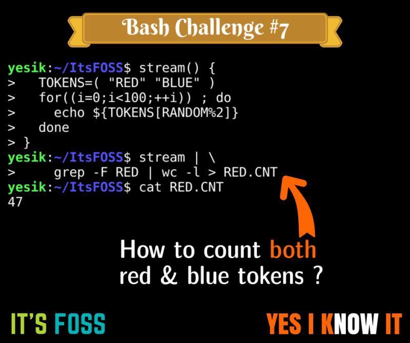Bash Script Challenge