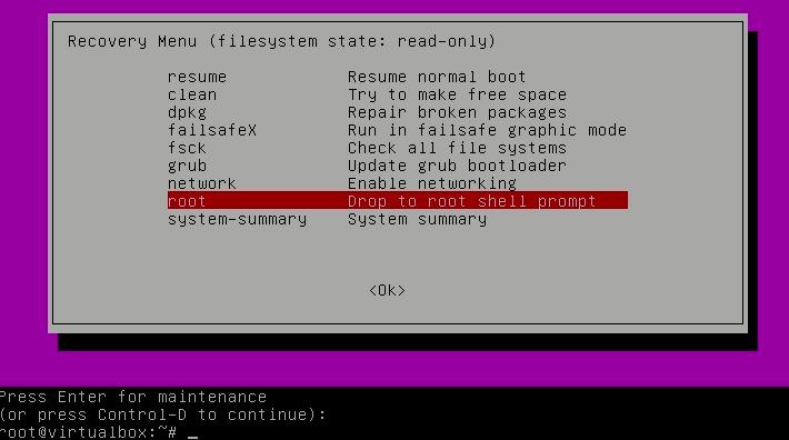 El indicador de shell raíz le permite restablecer la contraseña en Ubuntu