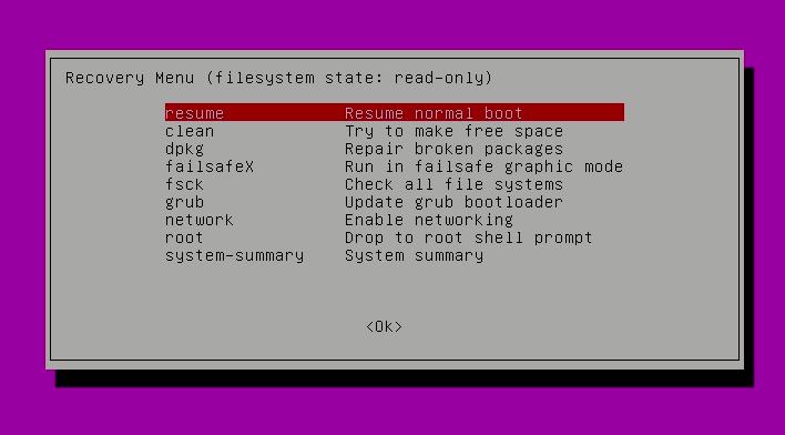 Use el modo de recuperación para iniciar normalmente después de restablecer la contraseña en Ubuntu
