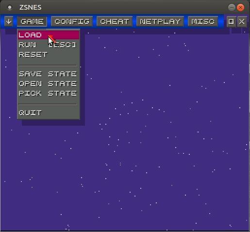usando ZNSES en Ubuntu Linux